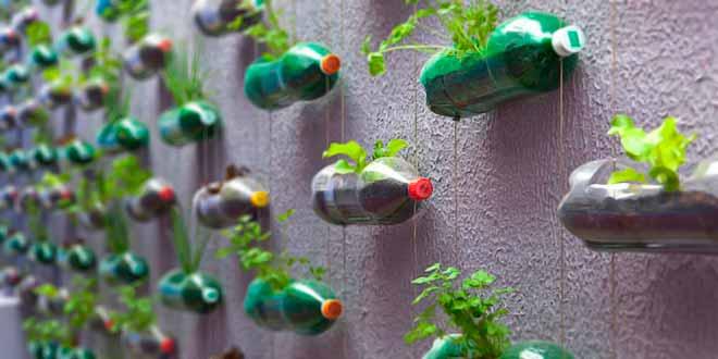 ¿Por qué hacer un curso de jardinería?