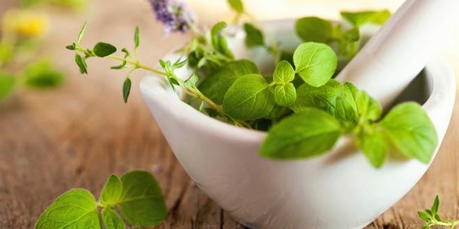 ¿Qué es la cosmética ecológica?