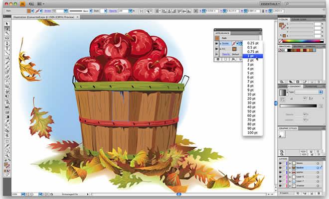 Primeros pasos en Illustrator