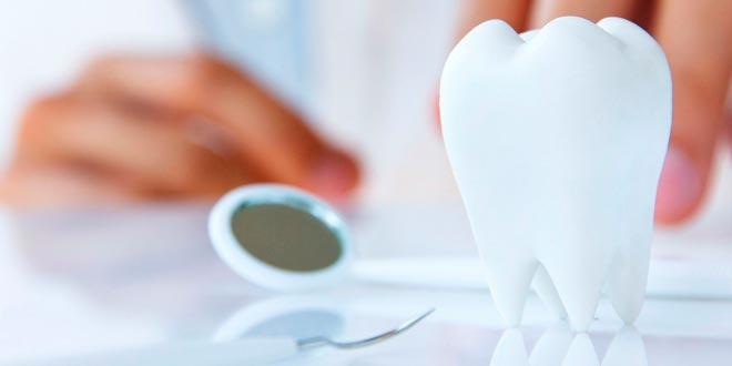 Higiene bucal y ortodoncia