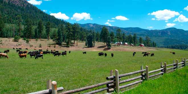 El turismo rural, un servicio cada vez más requerido