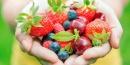 Cursos cortos de nutrición pensados especialmente para vos