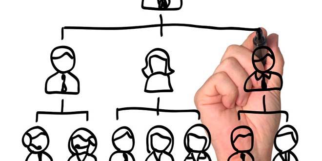 La importancia del organigrama en la administración