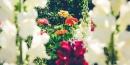 ¿Qué es el diseño de jardines?