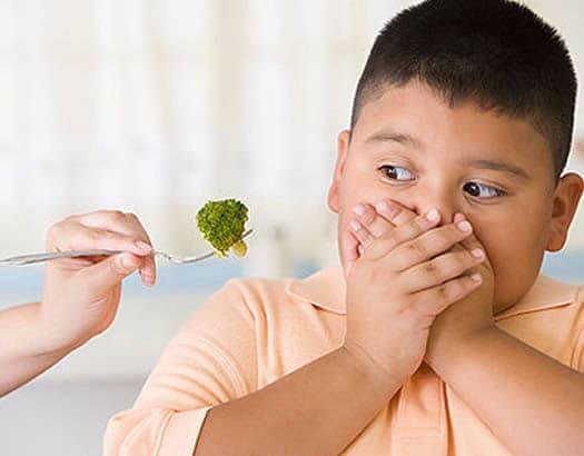 Cursos Gratuitos de Nutrición